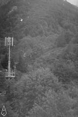07 (andrea.fogliacco) Tags: rosso film pellicola ilford fp4 plus sviluppo rullini vintage black white develop developed reflex old school vecchia scuola