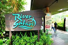 03 (樂活的大方) Tags: 20170724sb 新加坡動物園 river safari