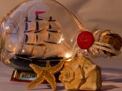 Belem - Macro monday - Three (morganelafond) Tags: macromondays macro boat bateau coquillage shell monday three macromonday