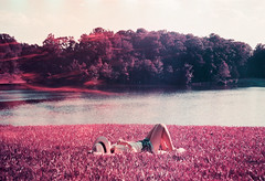 Dreams Turn Red (Hayden_Williams) Tags: park grass lawn lay laying relax peace sleep sleeping dream dreaming picnic lake shore shoreline trees nature outside outdoors purple lomography lomo lomochromepurplexr100400 sunset film analog fd50mmf18 canonae1