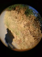 IMG_20170726_145828 (earthdog) Tags: 2017 lgenexus5x lge nexus 5x androidapp moblog cameraphone cliponlens fisheye needstags needstitle