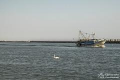 #caorle (Gian Franco De Tommaso) Tags: caorle mare spiaggia pesca barche