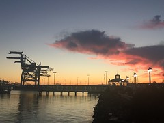 Oakland Ferry / Jack London Sq (craizdgoat) Tags: phone sunset california oakland portofoakland jacklondonsq