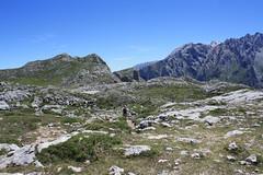 "Picos de Europa 2017 247 <a style=""margin-left:10px; font-size:0.8em;"" href=""http://www.flickr.com/photos/122939928@N08/36075616926/"" target=""_blank"">@flickr</a>"