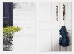 dyptique- La pluie (+ Groupe DOUCEUR + ABCédaire) Tags: dyptique high key makemesmile minimaliste flickr flickrelite flickrelitegroup pluie parapluie nikon nikoneurope nikonpassion portes