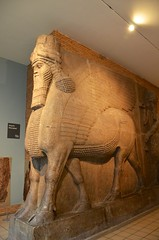 Colossal Winged Bull From the Palace of Sargon II (Joe Shlabotnik) Tags: sculpture london statue 2017 britishmuseum april2017 assyrian museum england afsdxvrzoomnikkor18105mmf3556ged