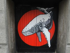 The Great Whale(Grafitti), The Green, Aberdeen, July 2017 (allanmaciver) Tags: great whale drawing red black grey granite aberdeen north east scotland doorway animal amazing detail design allanmaciver