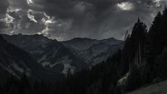 Kleinwalsertal (Netsrak) Tags: eu europa europe kleinwalsertal at austria mountain mountains berg berge mittelberg vorarlberg österreich gebirge alpen alps tree trees baum bäume
