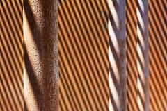 Poles with shadows (Jan van der Wolf) Tags: map159162v poles palen shadow shadows shadowplay schaduw schaduwen strepen stripes dof depthoffield scherptediepte abstract repetition herhaling rhythm visualrhythm monochrome monochroom roest rust roestig rusty lines lijnen lijnenspel interplayoflines playoflines