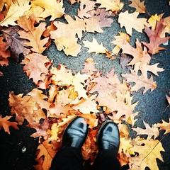 real me, real life autumn (Exedra Lyric) Tags: autunno realife exedra autumn walking shoes