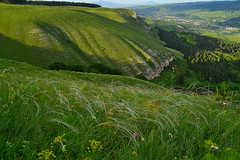 Stipa and shell-shaped slope (МирославСтаменов) Tags: russia caucasus kislovodsk borgustan stipa meadow steppe mountain slope blooming ridge
