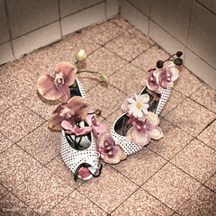 """Décoration dans les toilettes du Restaurant-traiteur  """"Les 3 Biches"""" (Pascal Rey Photographies) Tags: fetishoes sexdrugsrocknroll chaussures escarpins zapatos schuhen orchidées déco décoration toilettes toilets luminar nikon d700 photographiecontemporaine photos photographie photography photograffik photographierurale hotelrestaurant les3biches grandechartreuse fun pascalreyphotographies aruba abw"""