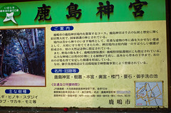 GR002334 (chihiro2014) Tags: kyuuchuu ibarakiken 日本 jp
