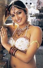 Indian Actress Haripriya Hot Sexy Images Set-2  (48)