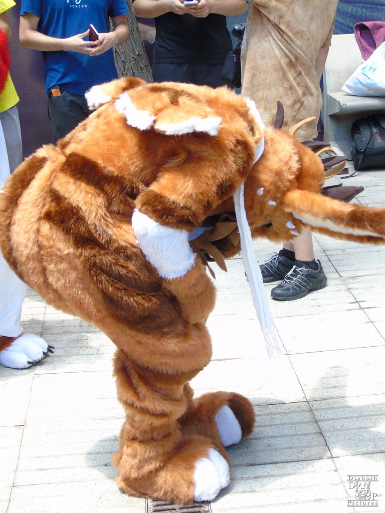 The World's Best Photos of conejo and fursuit - Flickr Hive Mind