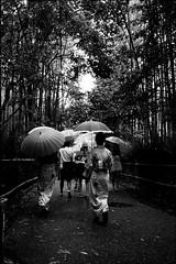 嵐 画像20