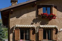 omaggi floreali (Clay Bass) Tags: 2485 pontechianale baita d750 flowers natural nikon red windows