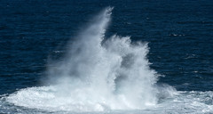 Kianinny cauldron (OzzRod) Tags: pentax k1 sigma70200mmf28 wave spray swell surge sea ocean tathra