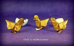 Chick designed by Barth Dunkan (Thomas Krapf Origami) Tags: barth dunkan chick origami bird paper paperfolding papierfalten küken papier art