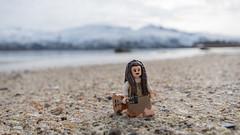 On the beach (Reiterlied) Tags: 1020mm angle beach d500 dslr fjord guitar lego legography leia lens minifig minifigure moss mountain nikon norway photography reiterlied sigma starwars stuckinplastic toy uwa wide