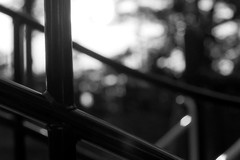 (lemonhats) Tags: asahipentaxsp spotmatic smctakumar11855 fomapancreative200 marumimcy2 kodakd76 160 f4 classicslr vintagecamera 55mmf18 m42screwmount manualfocusprimelens classiclens vintagelens yellowcontrastfilter iso200 35mmprintfilm 白黒、blackandwhite homedevelopment traditionalphotography analoguephotography filmphotography filmisnotdead filmisalive shootfilm believeinfilm filmforever filmcommunity fpper walking hikarigaoka nerimaku tokyoto japan suburbanpastoral sunset goldenhour