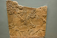 Huntsmen With Hounds In A Garden (meg21210) Tags: nineveh hounds dogs huntsmen garden relief northpalace assyria assyrian ancient 64535bc hunt art britishmuseum bm london england uk greatbritain ashurbanipal
