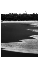 Seagulls (Jaka Pirš Hanžič) Tags: beach surfersparadise queensland qld australia street people person sea seascape water seagulls black white bw monochrome blackandwhite noiretblanc waves candid rocks wall pier abstract contrast