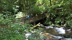 Anna Ruby Falls (heytampa) Tags: annarubyfalls bridge river stream