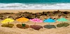 Beach Monkey (thedailyjaw) Tags: paradise maui hawaii island beach vacation gaymarriage love monkey umbrellas d610 nikon leefilters sand warmth shadows colors rainbow