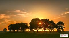 Avond (Evening)  in De Onlanden (Reina Smallenbroek) Tags: onlanden sunset evening avond bomen trees netherlands canonnederland natuurmonumenten drenthe landschap landscape zonsondergang