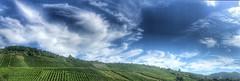 Weinberg und Wolken (Blende2,8) Tags: panorama wolken himmel wein weinberg schwabenland iphone deutschland badenwürttemberg