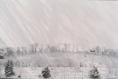 (oh so landscape) (William Keckler) Tags: landscape winter thinking thought consciousness flow film analog 35mm lomo lomography white