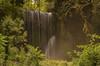 En un ricón del bosque. (Amparo Hervella) Tags: monasteriodepiedra zaragoza españa spain cascada agua naturaleza paisaje árbol largaexposición d7000 nikon nikond7000