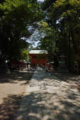 DP0Q0727 (chihiro2014) Tags: miyashita ibarakiken 日本 jp