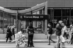 _MG_4962 (BIANO SKATE STYLE.) Tags: sp splove spfotografia spdagaroa spcapital paulistadedomingo paulista avpaulista avepaulista fotografiapretoebranco fotoderua fotopretoebranco fotografiaderua streetphotography streetfotography streetfotografia metro metrosp fotografianometro t2i canon