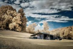 Morning Barn (shutterclick3x) Tags: infrared ir backroads barn morninglight frankloose