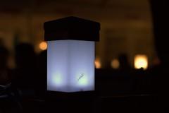Garden lamp (navarrodave80) Tags: restaurant garden lamp light blacks contrast night