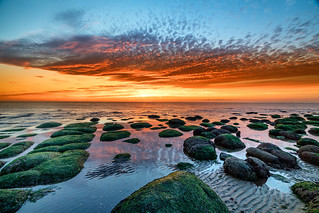 Hunstanton sunset with seweed rocks in foreground, Norfolk, UK (1)
