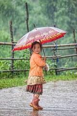_U1H1422 Lao Chai,Mu Cang Chai,Yen Bai 0617 (HUONGBEO PHOTO) Tags: yênbái mùcangchải xãlaochải northvietnam umbrella rainy hmongchildren children countryside highland outdoor