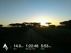 "Fast and flat, straight from the house, get some non hill training on the trails for a change, you know, just to confuse the legs, which they were... ""what's all this non climbing stuff I am running on..."" #helderbergtrails #running #runner #trailrun #str (Reme Le Hane) Tags: fast flat straight from house get some non hill training trails for change you know just confuse legs which they were whatsallthisnonclimbingstuffiamrunningon helderbergtrails running runner trailrun stravaphoto nature fun southafrica tomtom tomtomadventurer fitness outdoorsports stravarun runsa runninglife sauconyperegrine saucony resultsstarthere teamspca capespca ctmarathon peace trail run this september if would like support fundraising project great cause please checkout link bio any much appreciated d"