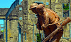 Brothers - US-Filipino Soldiers of Corregidor (jimguzior) Tags: mcarthur corregidor battle manila tagatay rizal guzior hero philippines art photographer hawaii mabuhay fort santiago malate ermita pasay filipino 2017 white man japanese spanish marcos pi storm greenhills green hills baseball rizalbaseballstadium stadium gehrig babe ruth bambino