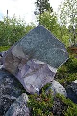Rock near Stora Sjöfallet (Madde Elg) Tags: laponia lapland lappland rock sten storasjöfallet stuormuorkke