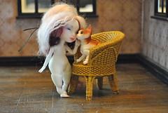 Kitty cat (Madcat ♥) Tags: bjd cat dust doll dod madcat
