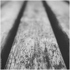 Bench (peterphotographic) Tags: img7278sqcb2bwess3edwm canon g15 square camerabag2 ©peterhall walthamstow e17 eastlondon london england uk britain macromondays texture macro closeup bench sit seat lines parallel depthoffield dof bokeh symmetry shadow blackandwhite bw monochrome