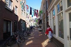 Delft, Hollande, 04/2017 (jlfaurie) Tags: delft city ville ciudad holland holanda hollande gladys michel mechas mpmdf jlfr jlfaurie 042017 spring primavera printemps
