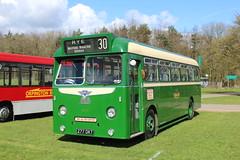 Classic M&D. (steve vallance coach and bus) Tags: 277dkt aecreliance parkroyal maidstonedistrict southeastbusfestival detling preserved