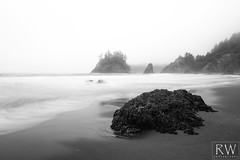 Not Even Over Time (sleepnever) Tags: rock beach surf waves ocean fog foggy tide morning coast trinidad california 2470l robertwatts