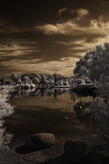 View From The Shore  Line At  Lindo Lake (Bill Gracey 15 Million Views) Tags: ir infrared infraredphotography nature naturalbeauty highcontrast convertedinfraredcamera lindolake lakeside sky clouds water composition