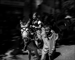 Si fiers de défiler!! / So proud to pass!! (vedebe) Tags: noiretblanc netb nb bw monochrome humain people enfant enfants animaux fête ville city urbain rue street provence france âne