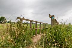 DSC_6163 (Adrian Royle) Tags: lincolnshire lincolnshirewolds crops footpath fields nikon bimble walk